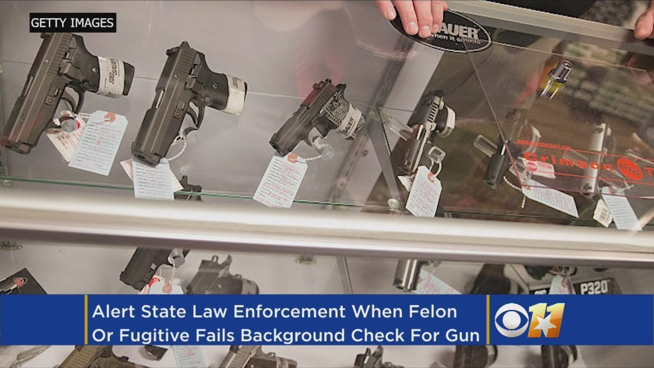 Texas Senator, NRA Support Alerts When Gun Buyers Fail Background Checks
