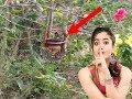 Desi Primitive Technology   DIY Mud pot Bird Water Feeder
