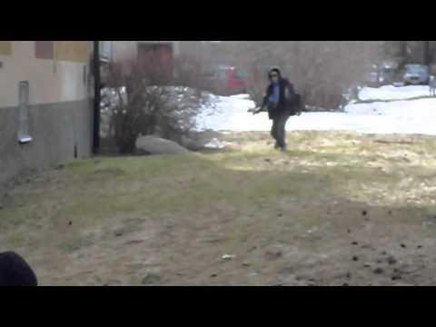 Swedish gangster: Den legendariske gangstern (Trailer)