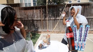 Coke and Mentos Challenge GONE WRONG