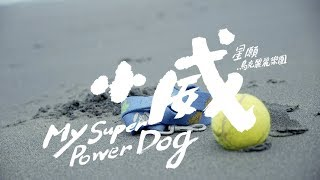 星願烏克麗麗樂團【小威 My Super Power Dog】Official Music Video