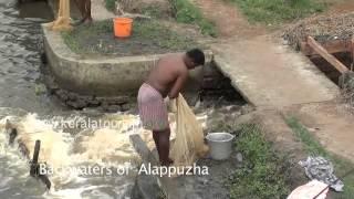 Alapuzha Backwaters Fishing Nets