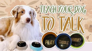 TEACH YOUR DOG TO TALK! | Teaching your dog to use buttons