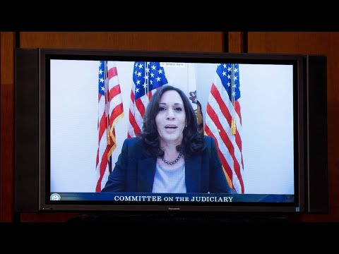 'Disaster' Kamala Harris kept in 'witness protection' for entire campaign