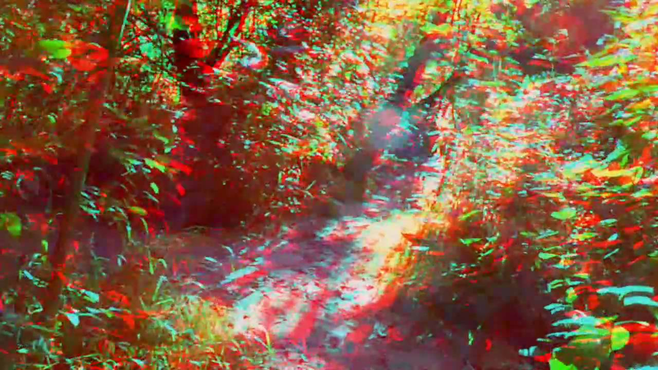 3D Film Trailer 1: C.Taeuber´s Waterside (HD)