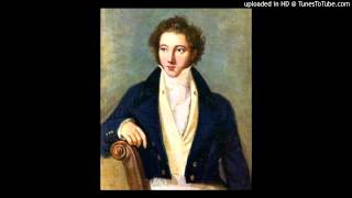 Vincenzo Bellini - Sinfonia in re minore - I. Andante maestoso