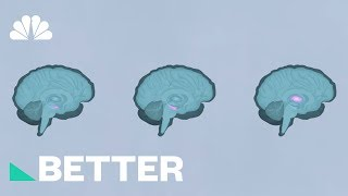 How Your Brain Works When You