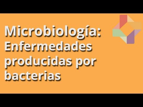 Enfermedades producidas por bacterias - Microbiolog�a - Educatina