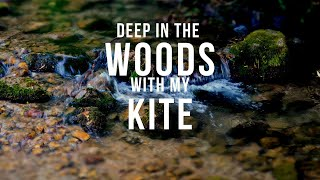 Deep in the woods kite solitude