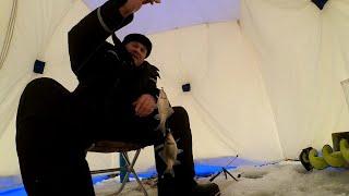 Зимняя рыбалка на карася Испытываю зимнюю самоподсекающую удочку