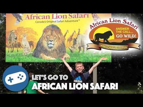 African Lion Safari Adventure