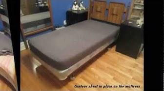 The Bedbug Shield