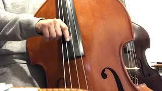 [BLUES] Double Bass strings pirastro oliv
