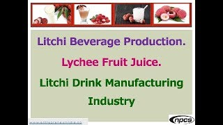litchi juice making factory