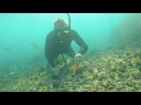 BIGGEST GOLD NUGGET RINGS FOUND CASH 💰 UNDERWATER METAL DETECTING (OCEAN TREASURE)