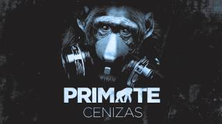 Cenizas - Primate