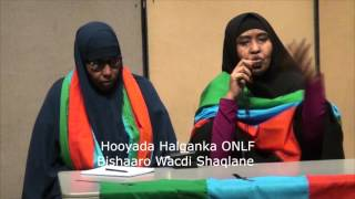 Hooyada Halganka ONLF Bishaaro Wacdi Shaqlane oo Jaaliyada Boston uga warantay Xaalada Dalka iyo Hal
