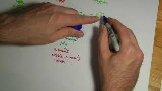 AQA GCSE Biology B8 summary Photosynthesis