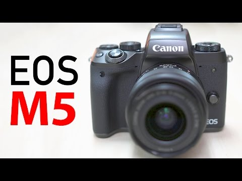 Why you Shouldn't Buy The EOS M5! Review after 2 Months