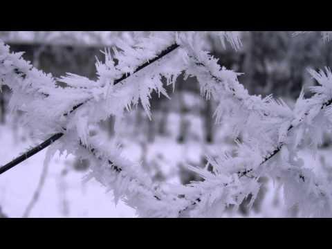 Nimeni Altu' - Suflet rece