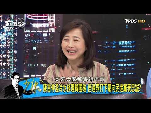 陳吉仲犯大錯 她斷定「韓流效應」將回饋給謝龍介