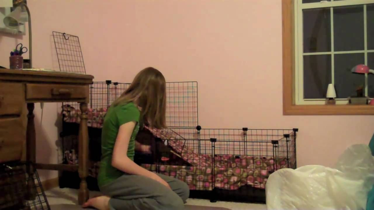 How to clean a guinea pig cage with fleece youtube for How to clean guinea pig cages