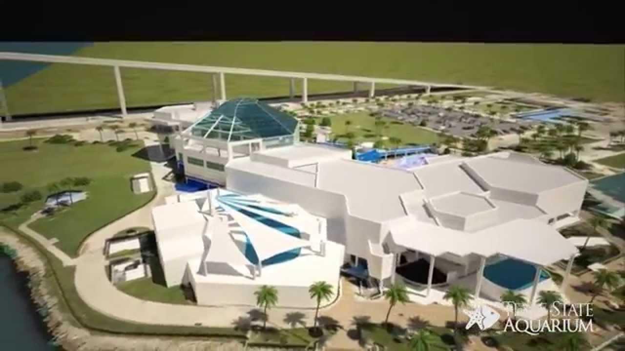 Texas State Aquarium See A New Sea Youtube