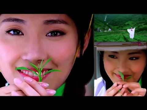 """Camellia Sinensis"" | Emerald green color, aromatic flavor, sweet taste & beautiful appearance"