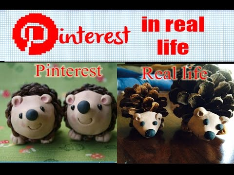 Diy Pinecone Hedgehog Pinterest In Real Life Youtube
