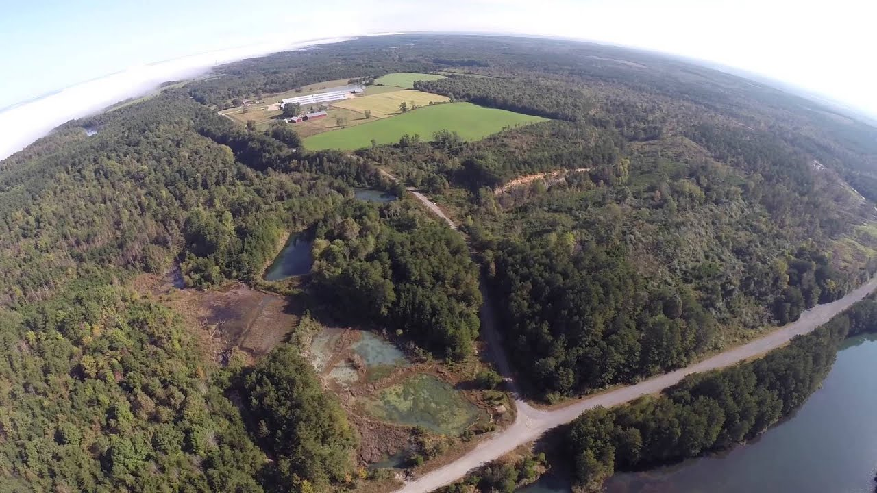 Alabama jackson county section - Absolute Auction 360 Acres In Jackson County Alabama