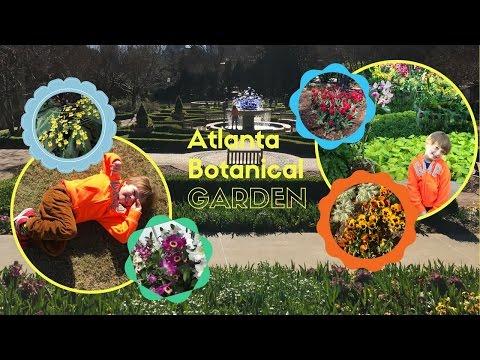 Atlanta Botanical Garden what's in bloom Spring in the air Kids Adventures with Sweetie Fella Aleks