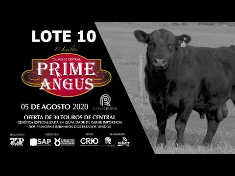 LOTE 10   BLACK OPAL TEI884  TOMAHAWK Prod  Agência El Campo