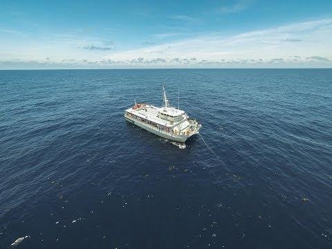 Jones Graduate School of Business goes deep-sea fishing