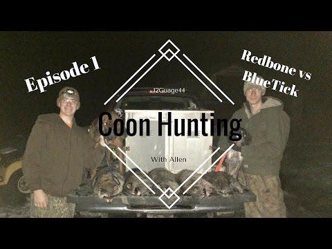 Redbone Vs BlueTick Episode 1 Coon Hunting