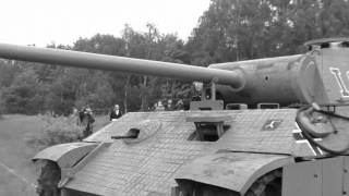 panther tank lost in the forest (tank replica!!!!)