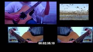 Mưa Đêm Tỉnh Nhỏ - Guitars