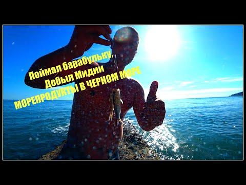Морепродукты с черного моря. Барабулька, мидии Самая опасная рыба скорпион.