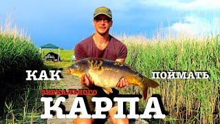 Рыбалка на карпа Карпфишинг Carpfishing