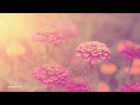 Beautiful Piano Music @432Hz ❯ Relaxing Music ❯ Beautiful Soft Soothing Music