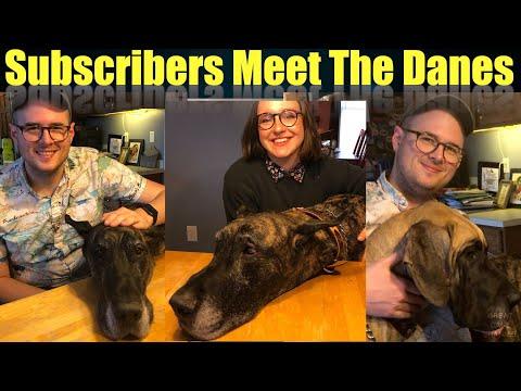 subscribers-meet-magic-&-finn
