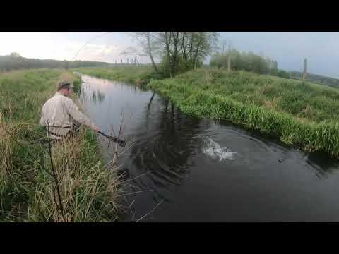 Pstrągi Na Suchą Muchę#1 Jętka Majowa - Fly Fishing