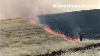 Nusaybin'de İtfaiyeciler yangın bölgesinde iftarlarını açtı
