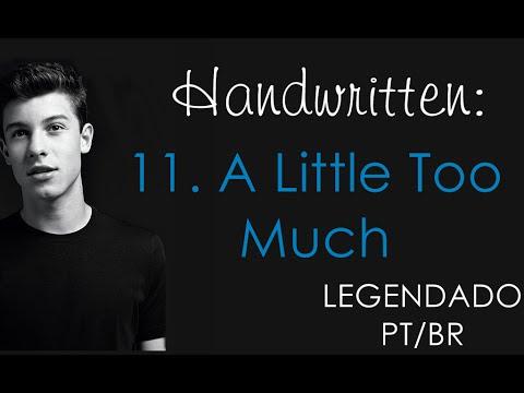 A Little Too Much - Shawn Mendes (Legendado PT/BR)