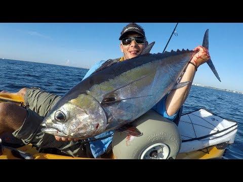 Offshore Kayak Fishing Singer Island Florida | 100 Pounds Of Fish!