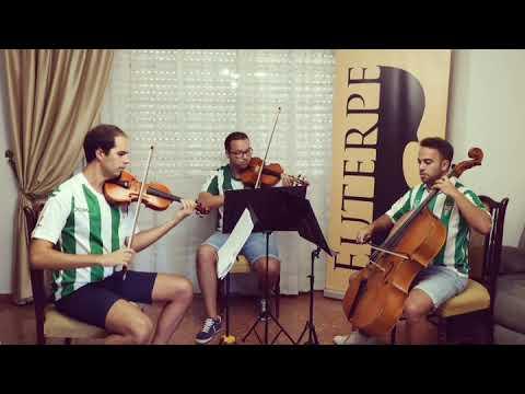 Parte del Cuarteto Euterpe interpretando el himno del CCF