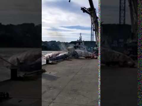Complicado rescate de la ballena que apareció varada en Asturias