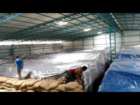 Commodity fumigation by global pest control