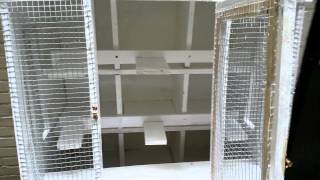 Homemade Small Breeder Pigeon Coop