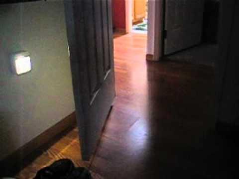 d27155a25a8 Mr. Beams™ Motion-Sensing   Stick Anywhere   Night Lights.wmv - YouTube
