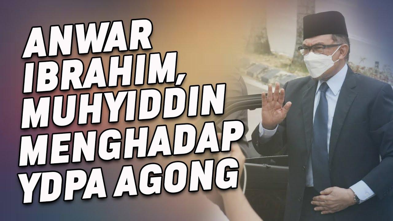 Anwar Ibrahim, Muhyiddin Menghadap YDPA Agong